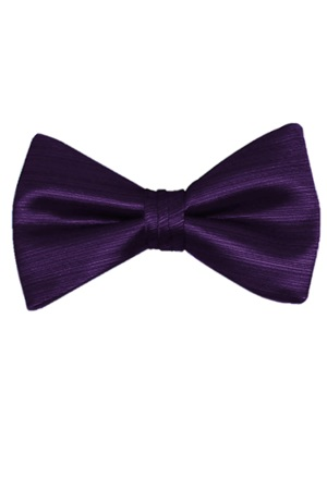 Picture of Amethyst Vertical Bow Tie
