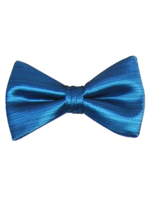 Picture of Aqua Marine Vertical Bow Tie